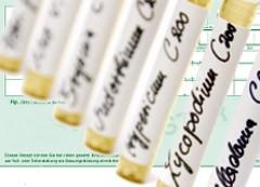 Bild zum Beitrag Verband kritisiert Pausenjahr bei Erstattung von Homöopathie