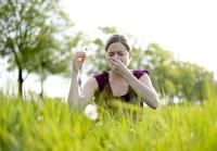 Pollenflugallergien nehmen zu