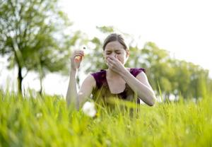Pollenflugallergien nehmen zu,  (c) fotolia.de / luna