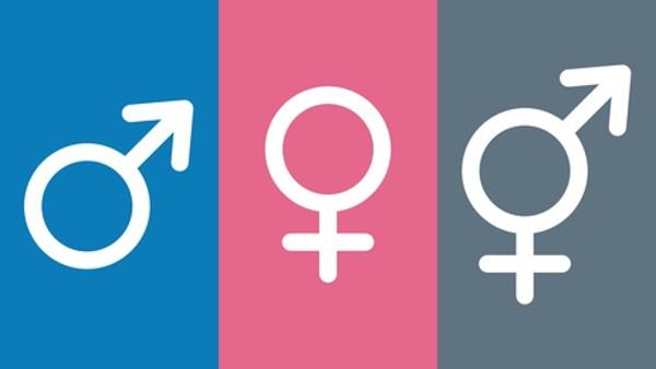 Geschlecht divers - Trans- und Intersexalität