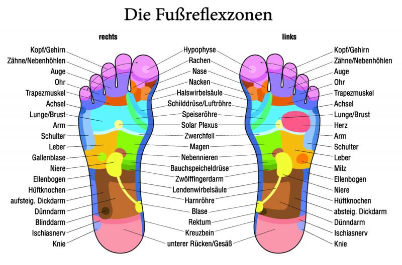 Übersicht über die Fußreflexzonen