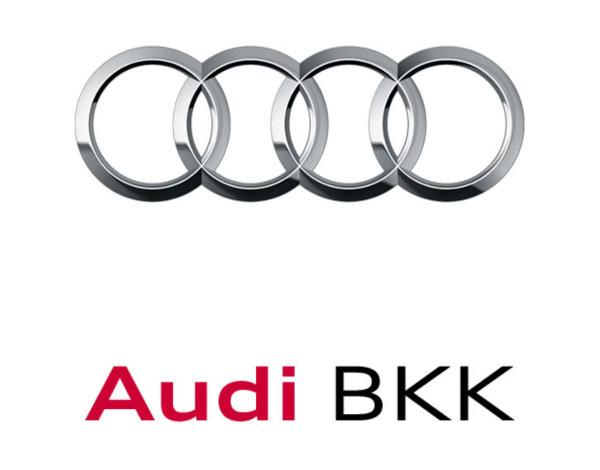 Bild zum Beitrag Jubiläumsfeier der Audi BKK