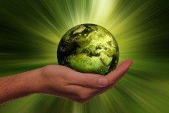 Krankenkassentest: Nachhaltigkeit